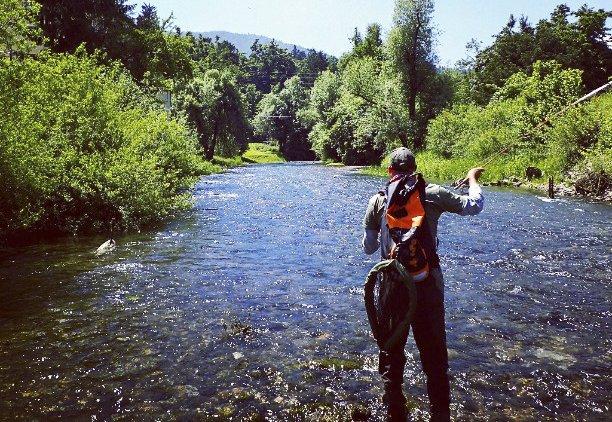 ribarjenje